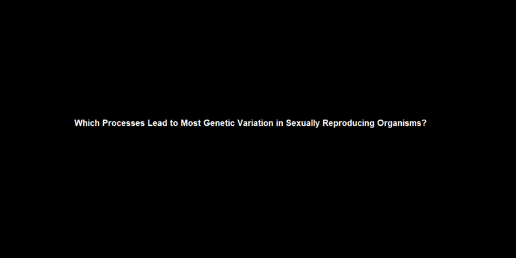 Which Processes Lead to Most Genetic Variation in Sexually Reproducing Organisms?
