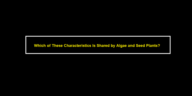 Which of These Characteristics Is Shared by Algae and Seed Plants?
